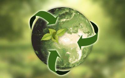LDPI maîtrise la gestion du recyclage de ses déchets